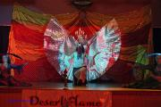 Alexandra  & Desert Flame Belly Dancers 13th Annual Concert